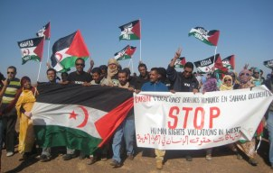 Image result for western sahara conflict